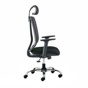 stolice modrulj